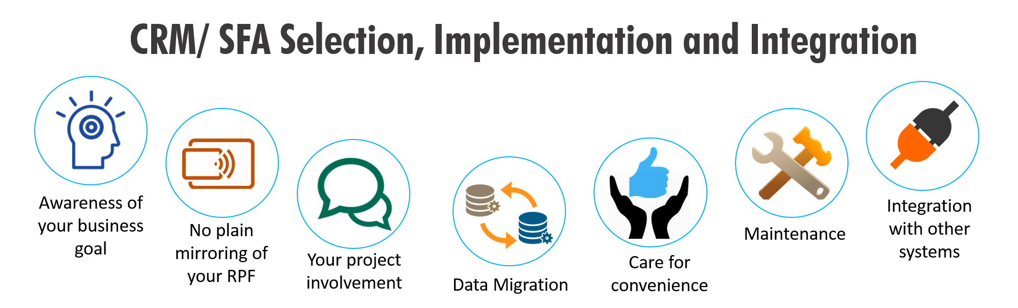 CRM/ SFA Selection, Implementation and Integration