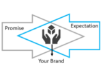 Credible & Practical Brand Values
